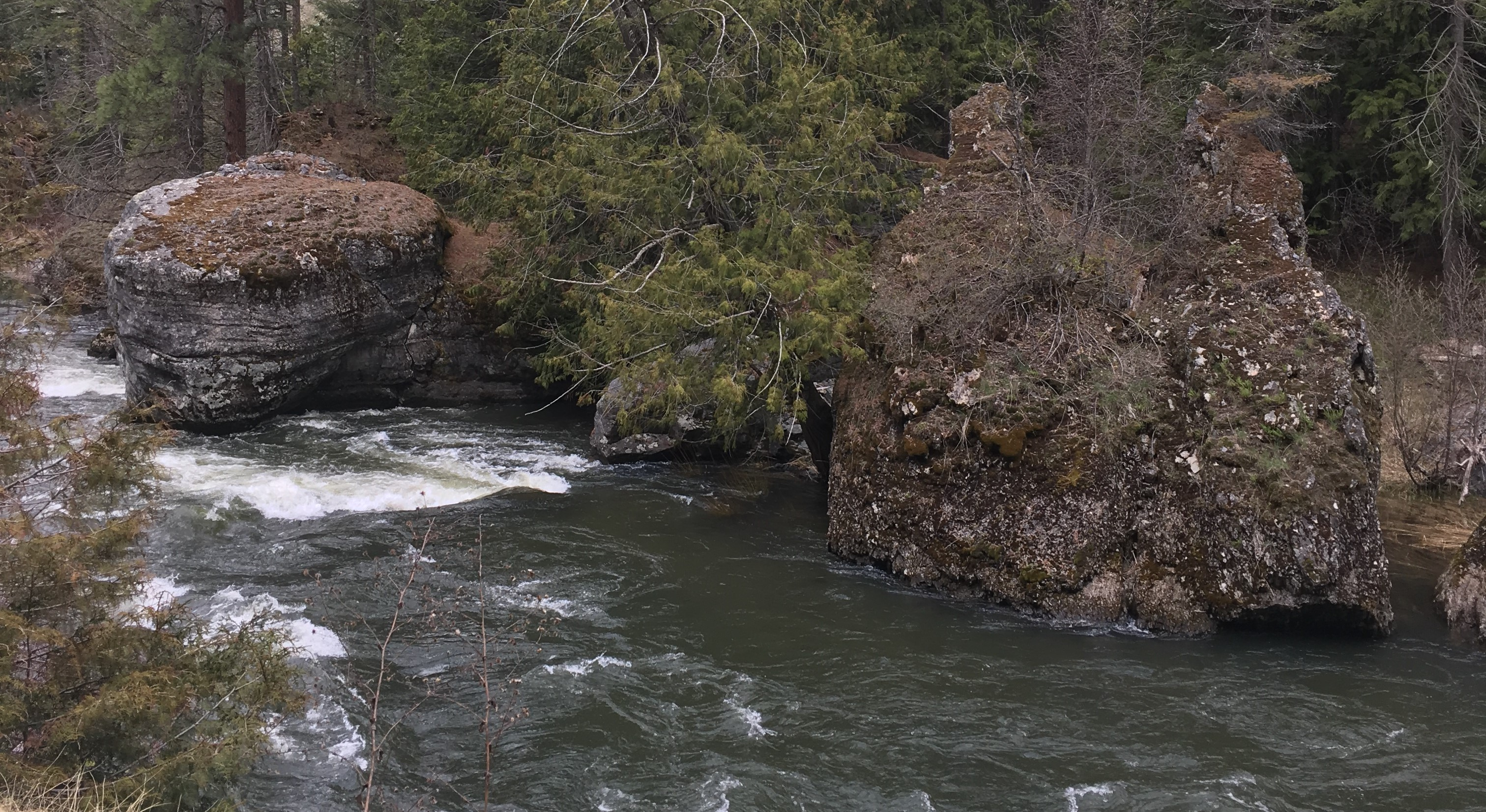 Thompson River Clean-Up – May 4