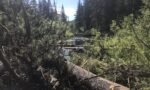 Partners collaborate to enhance habitat in Fishtrap Creek
